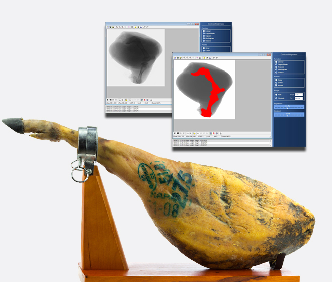 X-ray inspection of bone in products hams